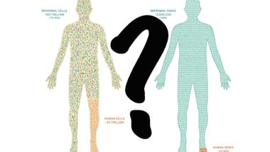 Tényleg tízszer annyi baktériumunk van, mint saját sejtünk?
