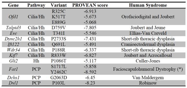 cormoran_human_disease_model.png