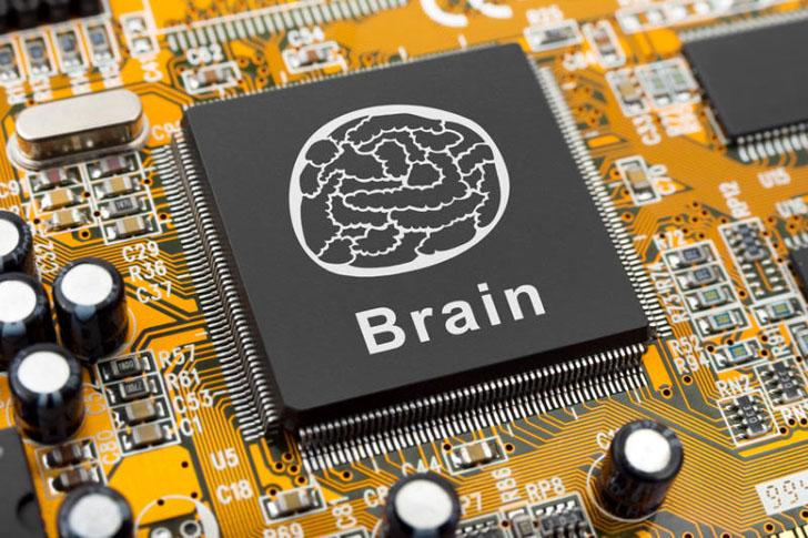 plasticbrain22_head.jpg