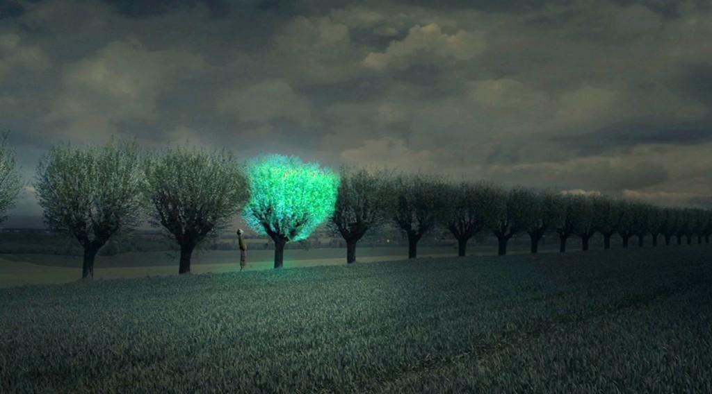 bioluminescent-tree2-1024x568.jpg