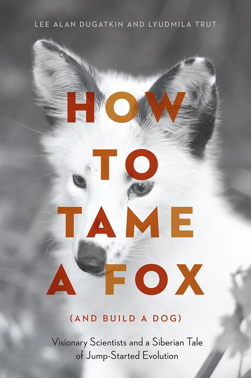 lea-tamefox.jpg