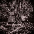 Kamasi Washington - Harmony of Difference (EP)