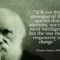 Darwin, az evolúciós elmélet atyja