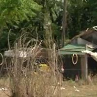 Csepeli patkányveszély az illegális hulladéklerakó miatt