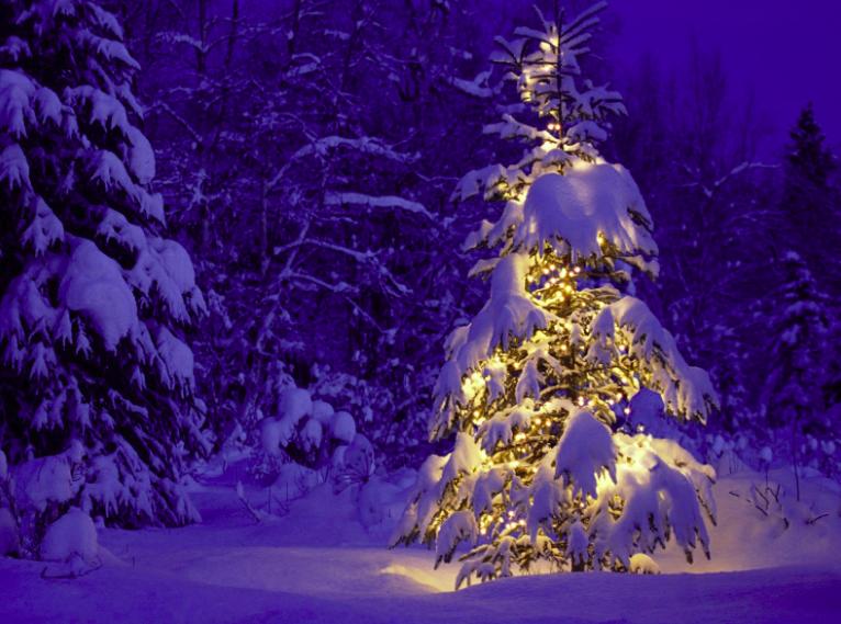 Legyen végre Karácsony!