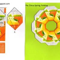 Pw Citrus Tavaszváró virág