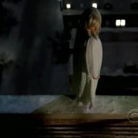CSI:NY 5. évad 20. rész! Prey