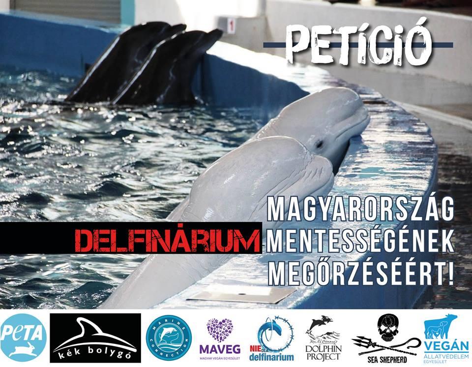 delfin_peticio.jpg