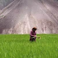 Így győzi le a gurulós bőrönd a Himaláját