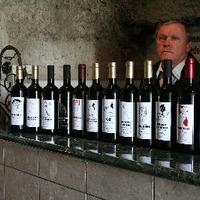 Nem a bor a lényeg, hanem a borozgatás és a boroscímke