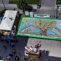 Világ legnagyobb mozaikja italos kartonból