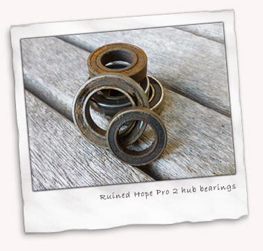 hope-pro2-worn-bearings.jpg
