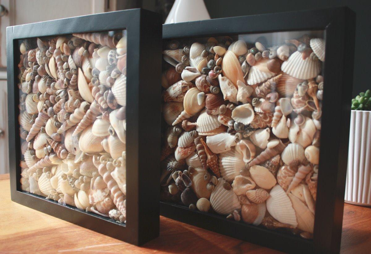simple-seashell-shadowboxes.jpg