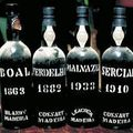 Madeira - borok (x)