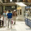 Ezen a hétvégén kutyák is mehetnek a Mammutba