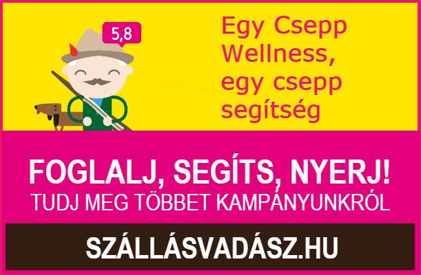 egycsepp-wellness-611x400.png