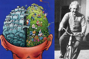 Jobb vagy bal agyféltekés volt Albert Einstein?