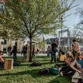 Közösségi fotófa a Március 15. téren