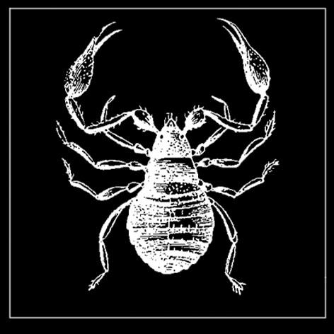 skorpio.jpg
