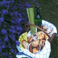 Piknik, bourekas,  VKF
