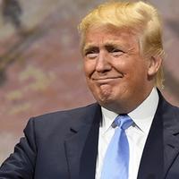 Trump: az első évad