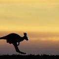 Új ausztrál külpolitika van születőben