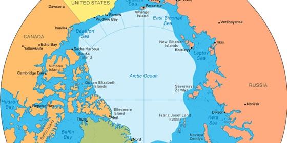 arktisz.jpg