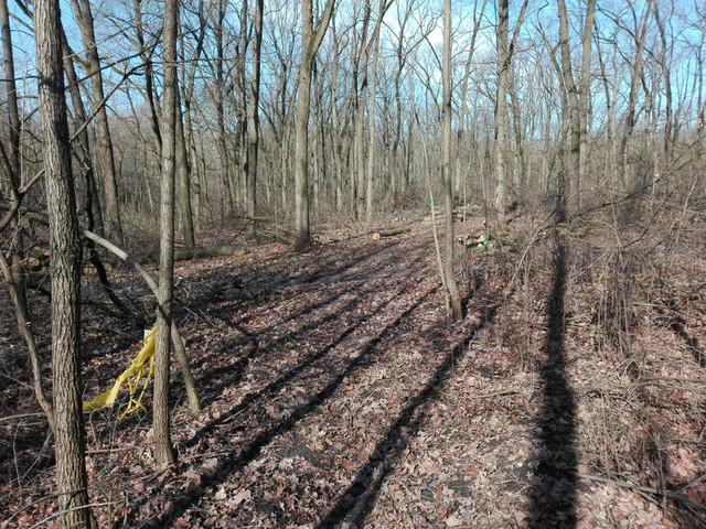 Fakitermelés vége, a futóútvonal újra használható