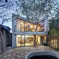 Ház a fa körül Shanghajban