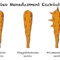 Paleo Menedzsment