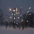 Városi erdő utcalámpákból