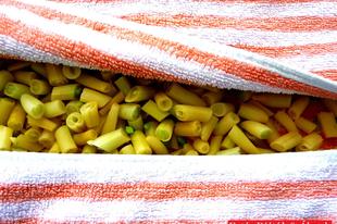 Zsenge zöldbabot télen-nyáron!