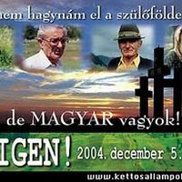 2004. december 5.0 II. - reflexiók határon innen és túl