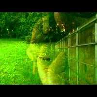 TURI: Glades in the Maze (video)