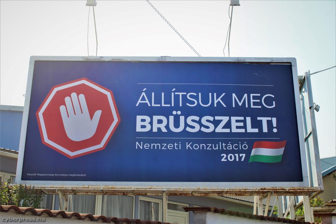 brusszel-medium.jpg