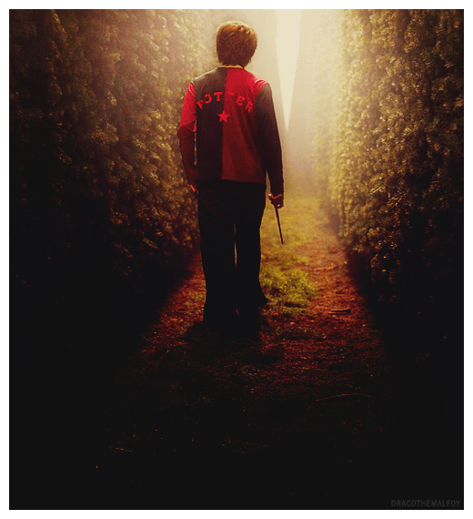 the-maze-harry-potter-27851133-500-550.png
