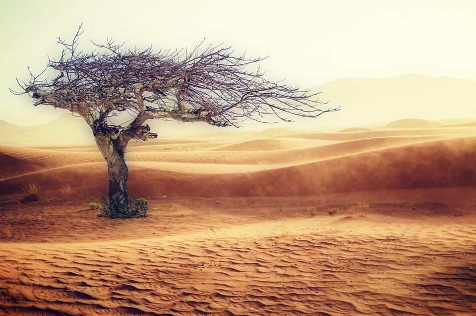 sivatag_klimavaltozas.jpg