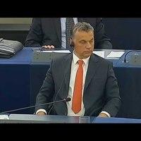 2013.07.03: A Tavares-jelentés vitája az Európai Parlamentben