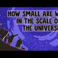 A mágikus cell bemutatja: a hónap animációi   Február