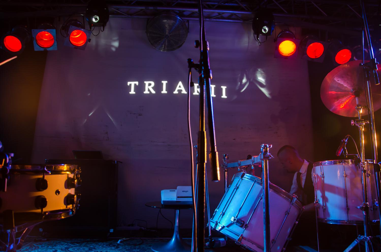 triarii01.jpg