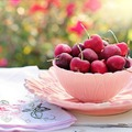 Milyen gyümölcsöket hozott eddig az életed?