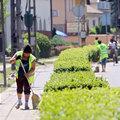 """Újabb """"pisi-gate"""" Józsefvárosban. Betiltották a közmunkás-majálist"""