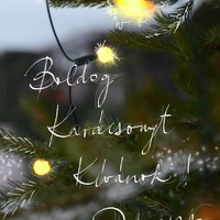 BOLDOG KARÁCSONYT KÍVÁNOK! (Merry Christmas to all of you!)