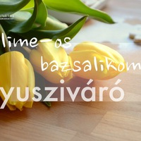 DRKONYHART: NYUSZIVÁRÓ LIME-OS BAZSALIKOMOS KEKSZ (Waiting for the Easter Bunny: Cookie with lime and basil)