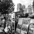 DRFRANCIART: A PÁRIZSI NOTRE DAME (Notre Dame of Paris)