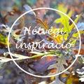 HÉTVÉGI INSPIRÁCIÓ #36 < Weekend inspiration #36 >