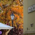 BUDAPEST DESIGN HÉT: Asztalka, a szülinapos cukrászda (FIRST BIRTHDAY OF ASZTALKA PATISSERIE IN BUDAPEST)