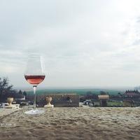 HÚSZ ESZTENDŐS A TAKLER BORBIRTOK (20th birthday of Takler Wine Estate, Szekszárd)