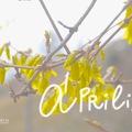 KEDVES ÁPRILIS! (Hi dear April!)