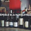 KÉPZELD EL A HÁRSLEVELŰT! (Imagine Hárslevelű wine!)